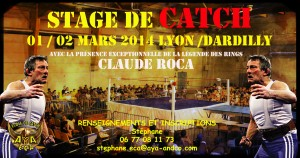 affiche stage mars dardilly