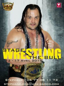 aff stage Avril 2015 - the bull