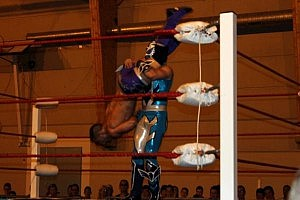 tristan archer vs bleu falcon aya gala catch