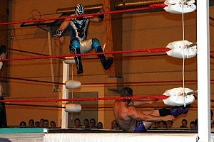 tristan archer vs bleu falcon aya gala catch_2